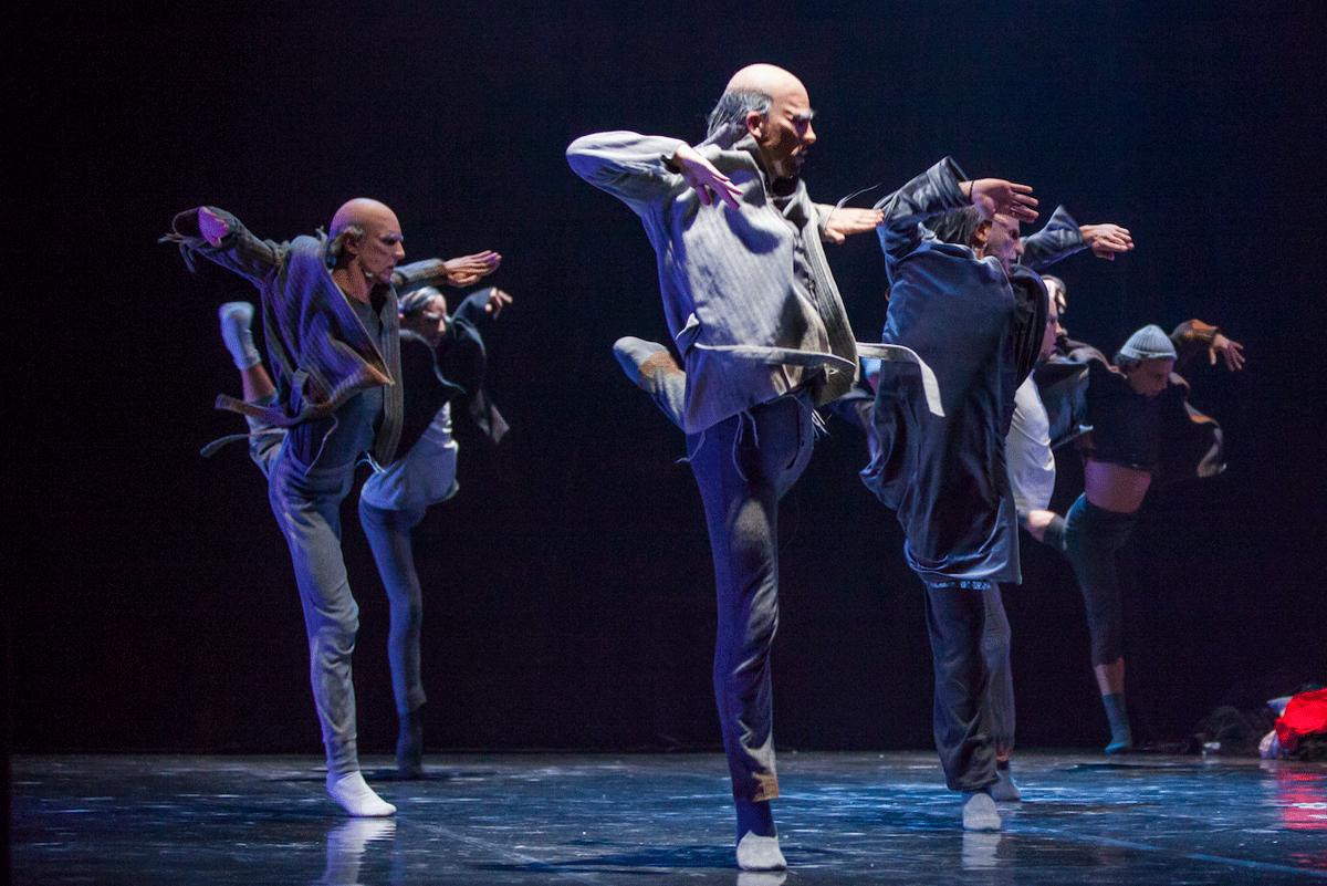 Parole di Danza, 19.11.2014 – Il Lago dei Cigni